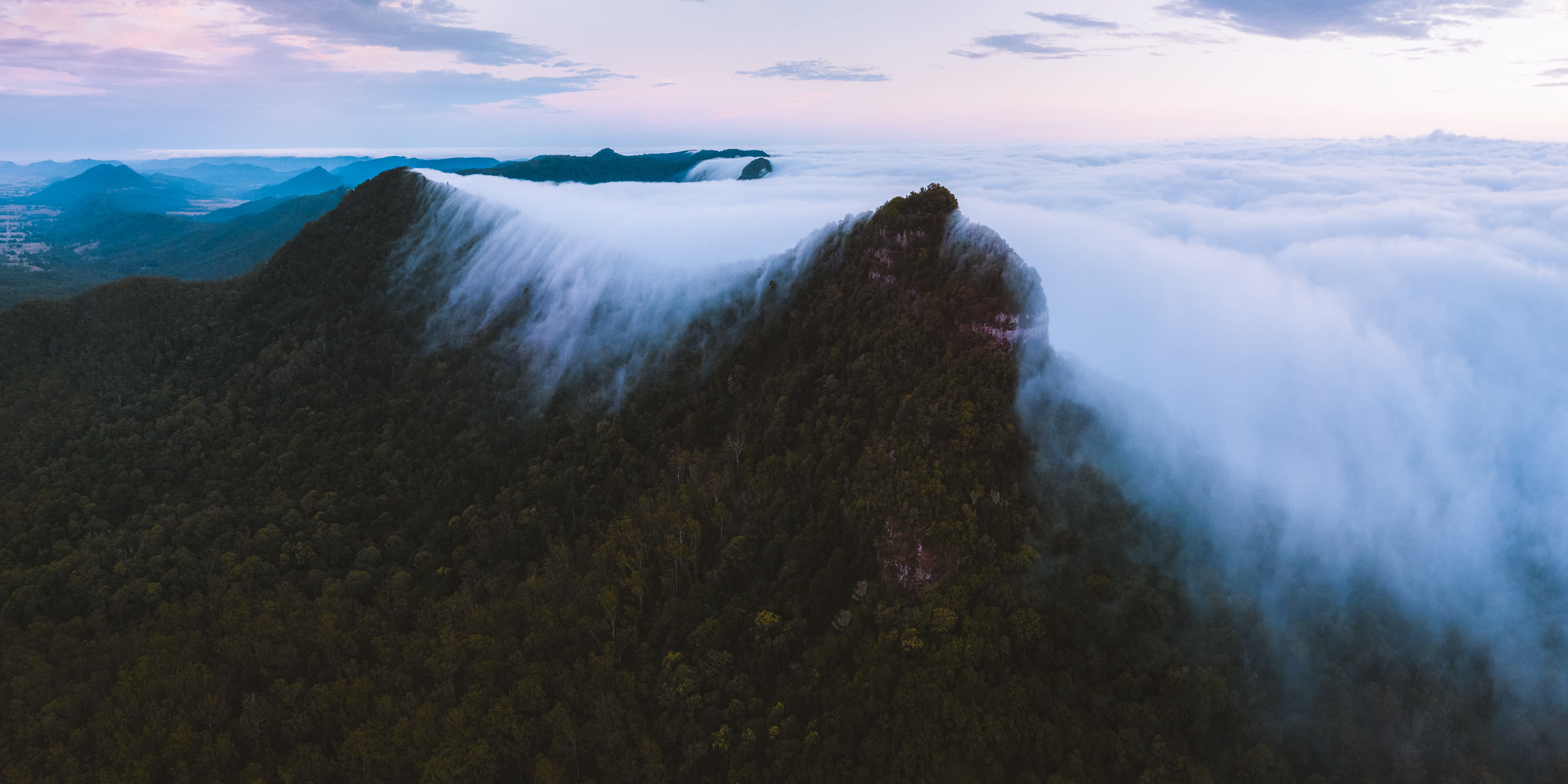 Mt Mitchell, South East Queensland